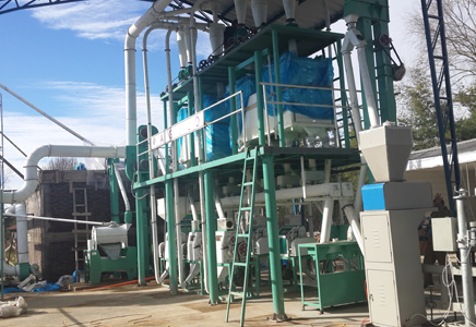 30TPD wheat flour plant in Chile