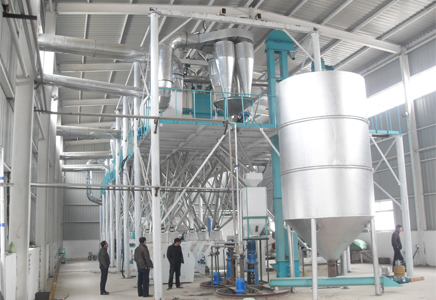80TPD steel frame structure flour mill plant