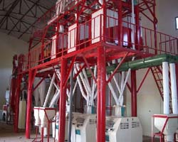 corn flour mill projects